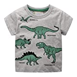 Dinlong Summer Toddler Kids Baby Boys Clothes Short Sleeve Cartoon Dinosaur Pattern Printed T-Shirt Tops (Gray, 18-24 Months)