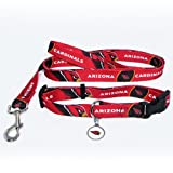 Arizona Cardinals Pet Set Dog Leash Collar ID Tag SMALL
