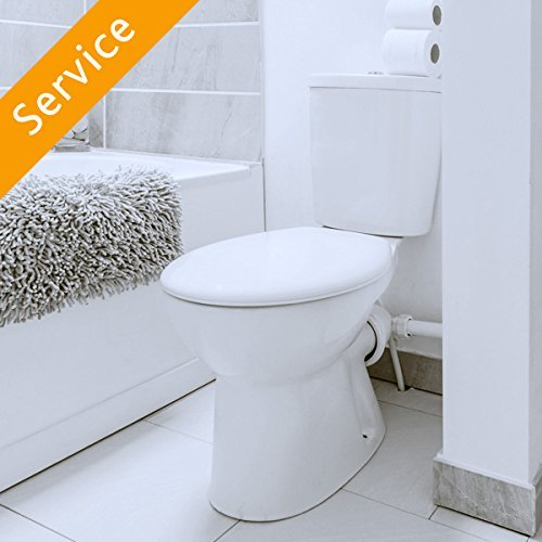 Toilet Replacement (Commercial) (Sink Bowl Install)