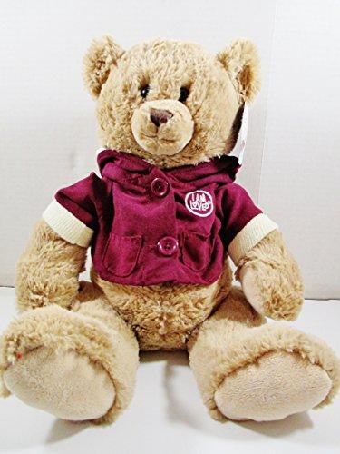 i-am-loved-plush-teddy-bear-18-stuffed-animal-make-a-wish-helzberg-diamonds-gift-bag-backpack