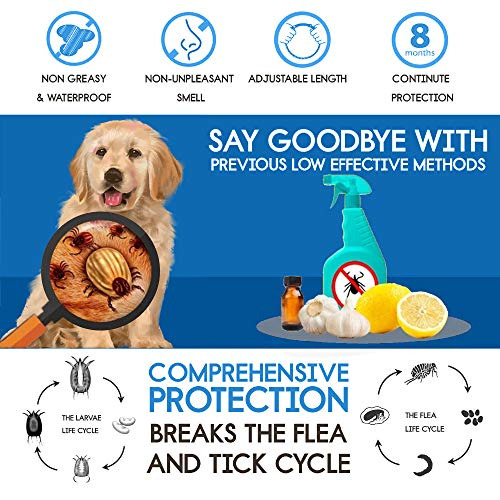 Buy flea and tick collars for dogs