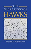 img - for The Migrations of Hawks book / textbook / text book