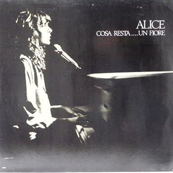 Alice - Cosa Resta   Un Fiore - Ariola - 203 647, CGD - 203 647