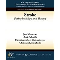 Stroke: Pathophysiology and Therapy (Colloquium Integrated Systems Physiology: From...