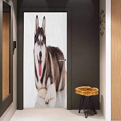 Onefzc Soliciting Sticker for Door Alaskan Malamute Funny Adorable Siberian Dog Blue Eyes Furry Domestic Canine Image Mural Wallpaper W31 x H79 Brown Cream White ()