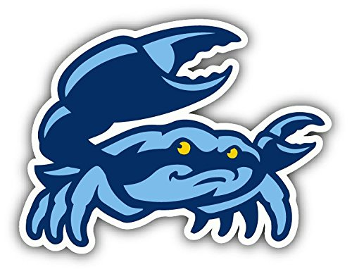 qualityprint Charlotte Stone Crabs MiLB Minor Baseball Crab Sport Decor Bumper Vinyl Sticker 5'' X - Charlotte Baseball