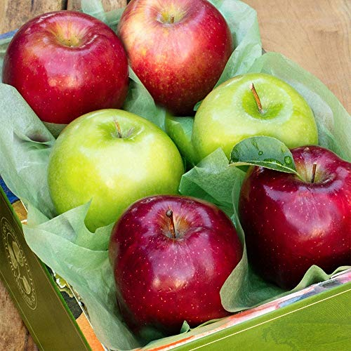 The Fruit Company Apple Medley Gift Box - 4 lbs - An Assortment of 6 (3 varieties) Premium Fresh Pacific Northwest Apples Packaged in a Reusable Watercolor Box Designed By Local Oregon Artist