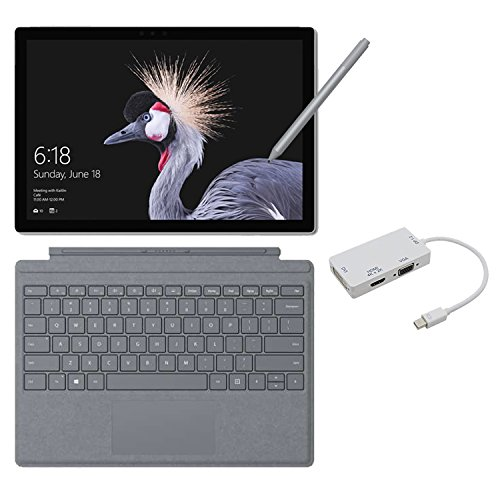 2017 New Surface Pro Bundle (4 Items): Core i7 16GB 1TB Tablet, Surface Pro Signature Type Cover Platinum, New Surface Pen Platinum, Mini DisplayPort Adaptor by NewSurfacePro