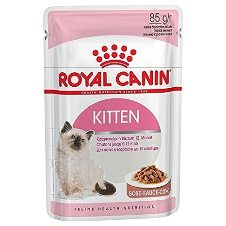 Comida para gatos Royal Canin Kitten Instinctive húmeda en bolsa (85 g): Amazon.es: Productos para mascotas