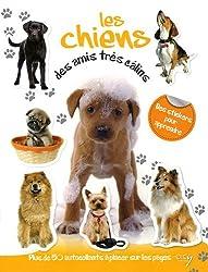 Les chiens, des amis très câlins : Avec plein d'autocollants en couleurs