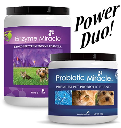 Miracle Pack Digestive & Immune Power Duo - Enzymes + Probiotics for Dogs and Cats ON SALE! Eliminate Diarrhea, Loose Stool, Yeast Issues, Poor Digestion, Excess Shedding, Stomach Issues, Constipation, PLUS Improve Skin & Coat, Bad Breath, and Body Odor.