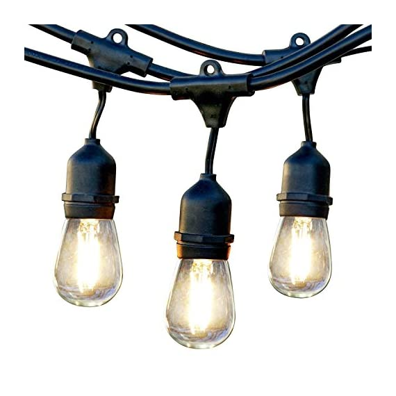 Brightech Ambience Pro - Waterproof LED Outdoor String Lights - Hanging 1W Vintage Edison Bulbs - 24 Ft Commercial Grade Patio Lights Create Bistro Ambience On Your Porch - ITALIAN CAFE STYLE LIGHTS TRANSFORM YOUR GAZEBO INTO A DELIGHTFUL RETREAT: Brightech Ambience Pro market lights set the mood so you can sit back, relax, and enjoy the evening. The lights are bright enough to BBQ by without a flashlight, but dim enough not to overwhelm. Perfect for entertaining or a romantic dinner!. --- Bulb Spacing: 3 Feet. --- Connections: Up to 8 strands total..--- DECORATIVE RETRO EDISON FILAMENTS CREATE GREAT BACKYARD AMBIENCE: Use vintage pergola canopy lights to illuminate your wedding reception, birthday party, or other event. These Edison strings with exposed filaments give off a warm glow reminiscent of old world bistros. Increasingly popular as indoor lighting too, for bedrooms, bars and restaurants. HEAVY DUTY, COMMERCIAL GRADE WEATHERPROOF STRAND LIGHTS FOR YOUR EXTERIOR: Industrial grade WeatherTite Technology by Brightech makes Ambience Pros durable. These lights are waterproof and have withstood winds blowing at 50 MPH, per reviews! UL listed, and the rubberized, flexible cord is thicker than a traditional rope. Confidently leave these lights on display year round. - patio, outdoor-lights, outdoor-decor - 51cFEaI5bnL. SS570  -