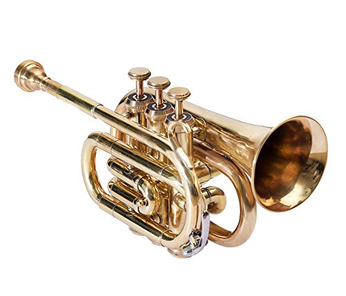 SC EXPORTS Pocket Trumpet with Carrying Case by SCEXPORTS (Image #4)
