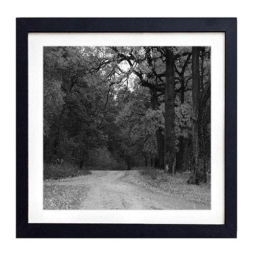 GLITZFAS PRINTS Framed Wall Art- Autumn Wood Trees Road Track Intersection Crossroads- Art Print Black Wood Framed Wall Art Picture for Home Decoration - Black and White 20