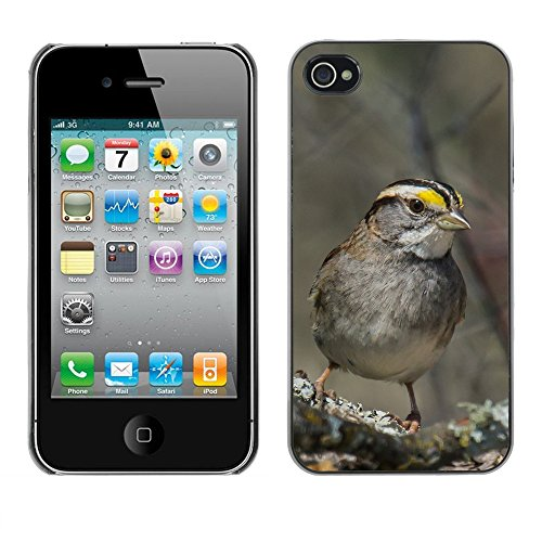 Premio Sottile Slim Cassa Custodia Case Cover Shell // F00023903 songbird Gris // Apple iPhone 4 4S 4G