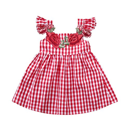 - Baby Girl Dress GoodLock Toddler Infant Embroidery Floral Plaid Print Dresses Outfits Clothes (Red, 24 Months)