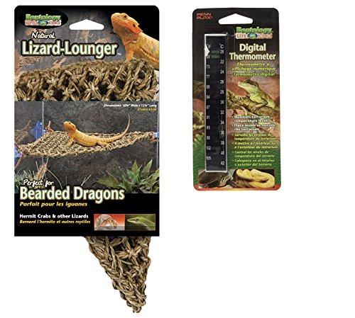 Penn-Plax Reptology Lizard Lounger, Small by Penn Plax