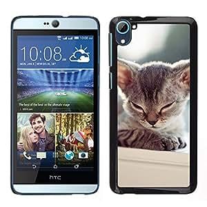 TopCaseStore / la caja del caucho duro de la cubierta de protección de la piel - Kitten Sleepy Balinese Tonkinese Cat - HTC Desire D826