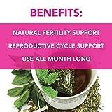 Pink Stork Fertility Tea: Sweet Mint, Raspberry