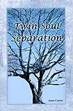 Twin Soul Separation