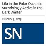 Life in the Polar Ocean is Surprisingly Active in the Dark Winter | Sarah Zielinski