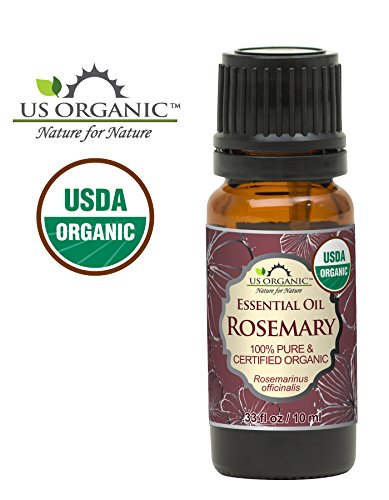 rosemary essential oil organic - 2