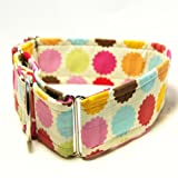 Made-in-USA 2 Inch Wide Premium Martingale Dog Collar – 32 FLAVORS, My Pet Supplies