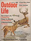 Outdoor Life (incorporating: Leisure Living and The Fisherman), vol. 140, no. 5 (November 1967): How It Feels to Die: A Snakebite Ordeal; Hotspot for Whitetails; Special Moose Hunt (Wolf Was Extra)