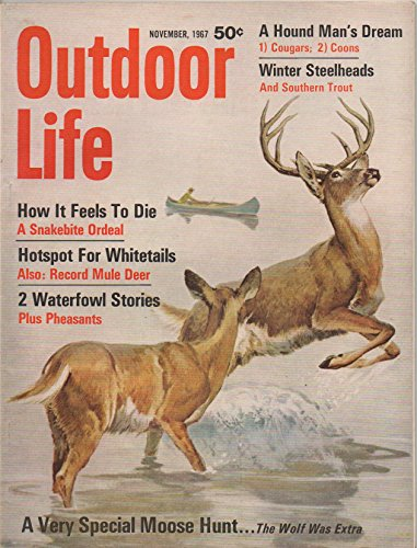 Outdoor Life  Incorporating  Leisure Living And The Fisherman   Vol  140  No  5  November 1967   How It Feels To Die  A Snakebite Ordeal  Hotspot For Whitetails  Special Moose Hunt  Wolf Was Extra