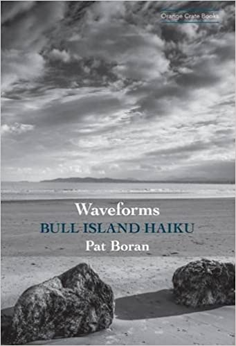 Waveforms: Bull Island Haiku