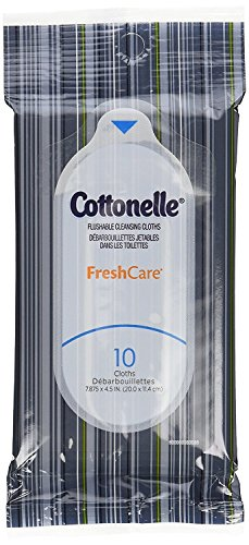 Cottonelle Fresh Care Flushable Wipes, Travel Pack, 24 Travel Packs of 10 Cloths Each, 240 Wipes (Personal Care Pack)