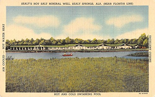 sealy-springs-alabama-sealys-hot-salt-mineral-well-antique-postcard-v20478