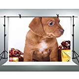 FH Backdrop 10x7ft Brown Puppy Gift Photography Background Photo Studio Props FH307