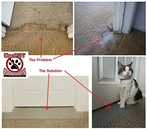 Amazon.com : CarPET Scratch Stopper 30   Stop Cats From Scratching Carpet  At Doorway : Scratching Pads : Pet Supplies