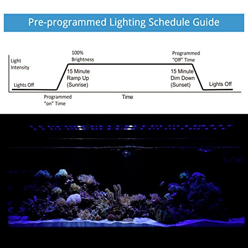 NICREW-ClassicLED-Aquarium-Light-Fish-Tank-Light-with-Extendable-Brackets-White-and-Blue-LEDs