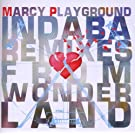 Indaba Remixes From Wonderland