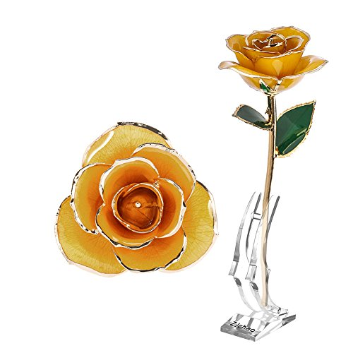 ZJchao Gifts for Women, Long Stem Dipped 24k Gold Trim Red Rose in Gold Gift Box with Stand Best Gift for Valentines/Mothers/Anniversary/Birthday/Galentine's Day(Yellow Rose with Stand) by ZJchao (Image #1)'