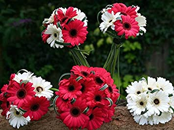 Amazon 芸術はポスターを印刷します , ガーベラの花束赤と白の