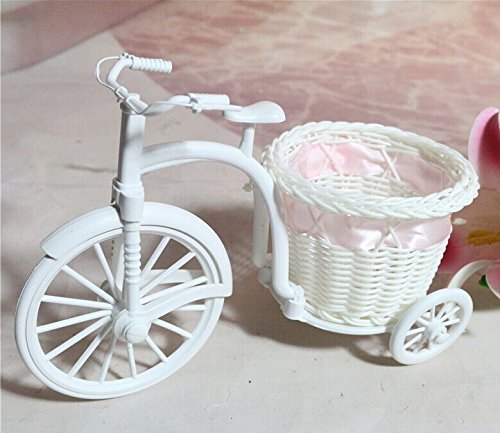 Amazon.com: Perfect shopping Plastic White Tricycle Bike Design ...