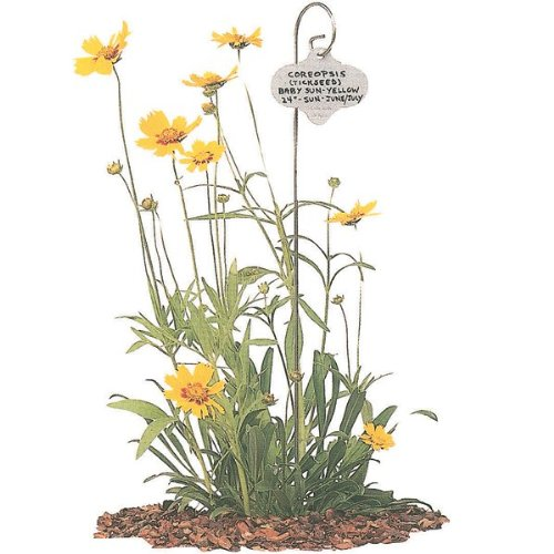 Bosmere Wren Garden Stakes with Stainless Steel Tags - Pack of 50