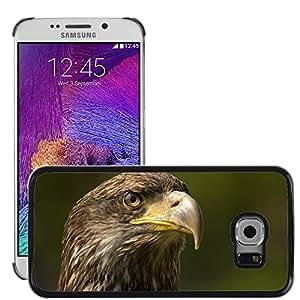 Super Stella Slim PC Hard Case Cover Skin Armor Shell Protection // M00144540 Bird Of Prey Bird Sharp Hunter // Samsung Galaxy S6 EDGE (Not Fits S6)