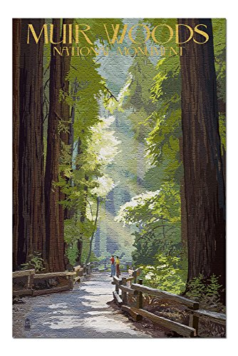 Muir Woods National Monument, California - Pathway (20x30 Premium 1000 Piece Jigsaw Puzzle, Made in USA!)