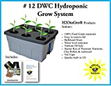 Replacement DWC Hydroponic Grow Box & Lid ~ #12 6 site by H2OtoGro