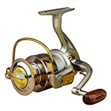 LeaningTech 5.5:1 10BB Ball Bearing High Speed Fishing Spinning Reel for Carp, Inshore & Saltwater Bait Fishing, Silver&Golden (EF1000)