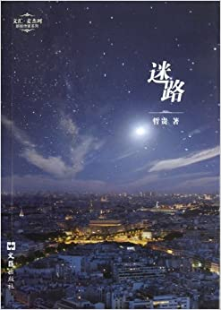 Book Lost (Chinese Edition)