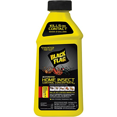 Black Flag Home Insect Control Concentrate, 16-Ounce, 1-Pack by Black Flag