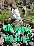 DIY Money Pot Turtle