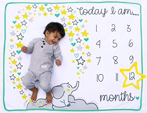 Calendar Personalized Monthly - Happily Ever After Baby Monthly Milestone Blanket - for First Year Photography with Frame Star Accessory | Photo Prop Set | 100% Cotton | 100 x 120 Centimetres