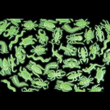 Glow In The Dark Critter Assortment - 144 per unit (Assorted, 1)