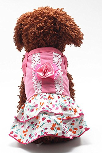 MaruPet Summer Sweet Puppy Doggie Hollow Dot Printed Princess Dress Pet Dog Lace Cake Camisole Tutu Dress with Bowknit RoseRed (Doggy Clothing)